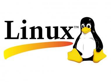 如何在Linux系统上安装Elastic Search简称(es)-图文教程